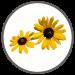 garden-icon-1